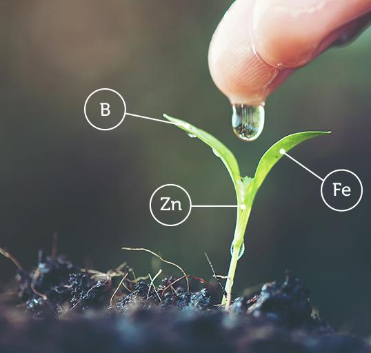 НИК Агро Сървис е част от семейството на НИК – група от компании с основен фокус върху интеграцията на решения за прецизно земеделие.