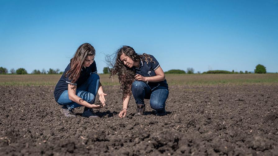 взимане на почвени проби